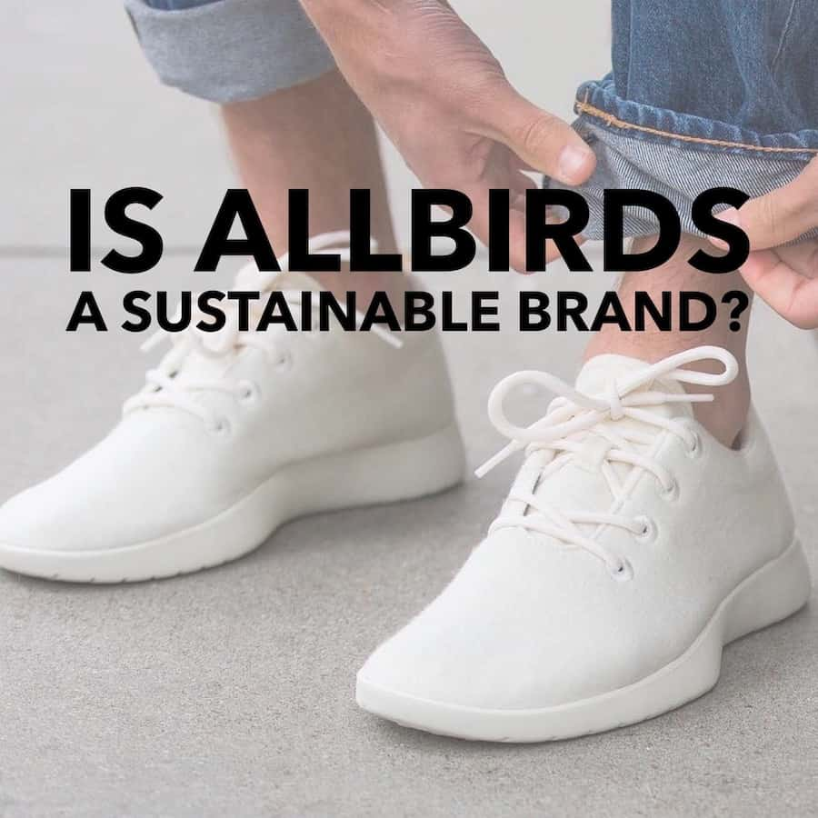 Is Allbirds a Sustainable Brand