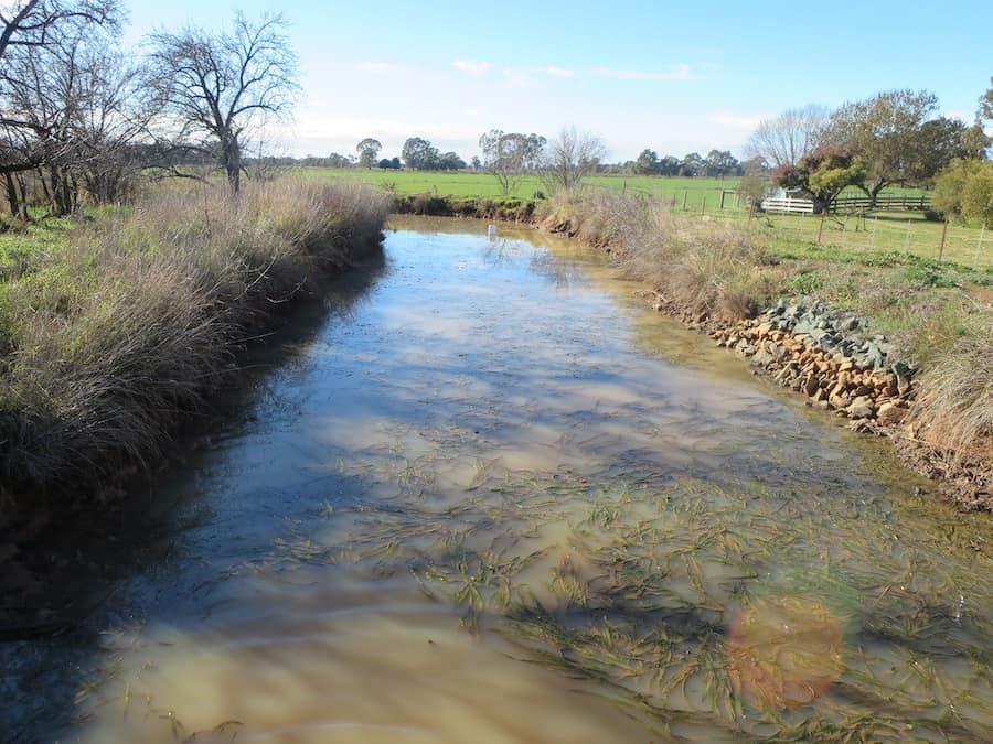 Pesticide pollution in waterways